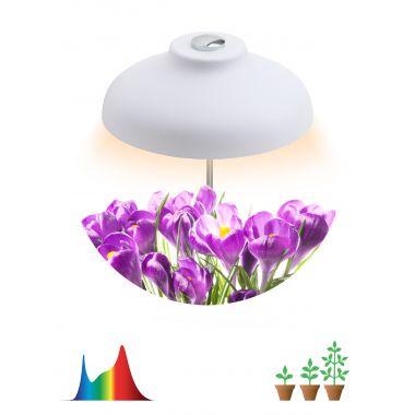 Светильник светодиодный LED штыковой полного спектра FITO-12W-FLED Эра