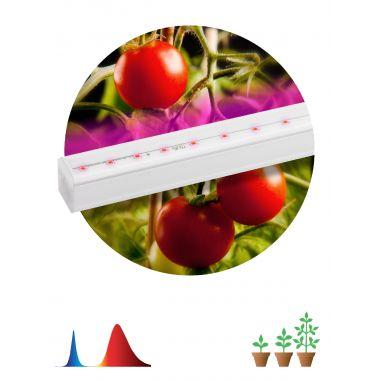 Светильник светодиодный LED линейный красно-синего спектра FITO-14W-Т5-N Эра