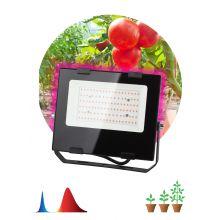 Прожектор светодиодный LED красно-синего спектра FITO-50W-RB-LED Эра
