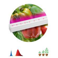 Светильник светодиодный LED линейный красно-синего спектра FITO-16W-Т5-N Эра