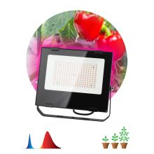 Прожектор светодиодный LED красно-синего спектра FITO-100W-RB-LED Эра