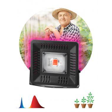 Прожектор светодиодный LED красно-синего спектра FITO-50W-LED BLUERED Эра
