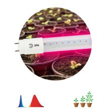 Лампа светодиодная LED красно-синего спектра FITO-18W-RB-Т8-G13-NL Эра