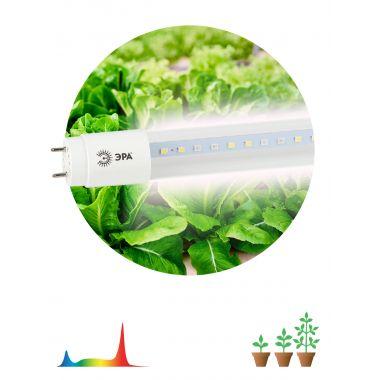 Лампа светодиодная LED полного спектра FITO-18W-Ra90-Т8-G13-NL Эра